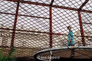 padiglione Brasile - expo 2015 milano
